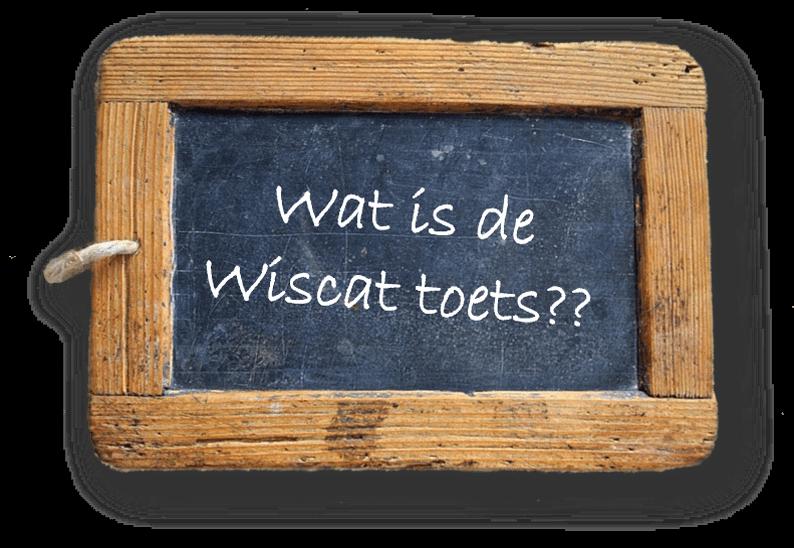 Wat is de Wiscat toets?