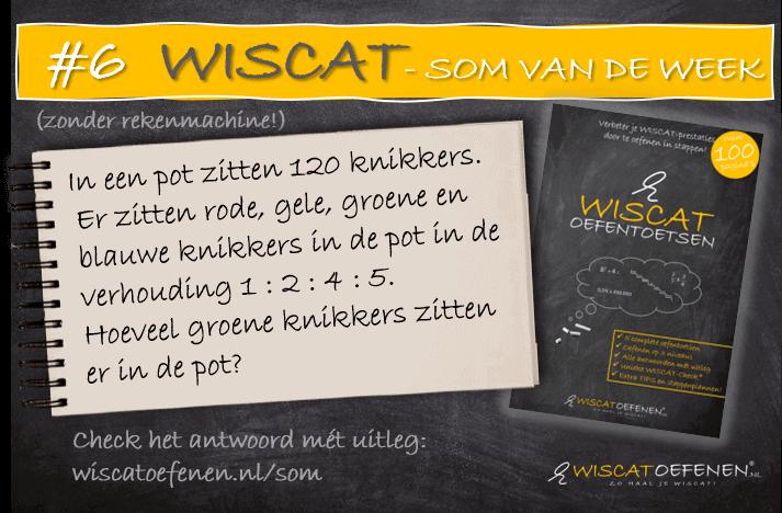 wiscat-som-van-de-week-5